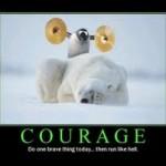courage sound