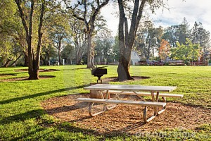 picnic-table-public-park-11578447